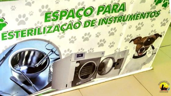 Veterinário em Itanhaém | Clinica Veterinária Belas Artes ☎ (13) 3422-5686
